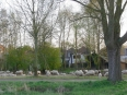 Capelle aan den IJssel Bed and Breakfast Inndeberm B&B  breakfastandbed.nl